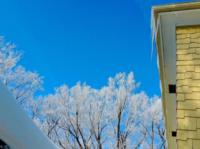 hoar frost March 20