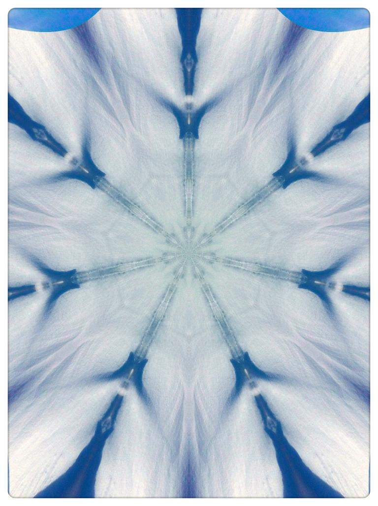Kitcam Snow