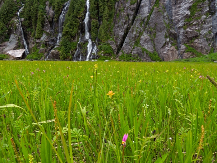 waterfall meadow