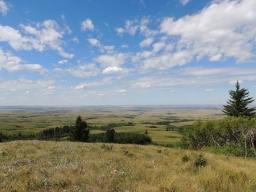 View from Bald Butte at Cypress Hills Interprovincial Park - the highest point of land between the Rockies in Alberta and the East Coast of Canada (proof that all of Saskatchewan is not flat!)