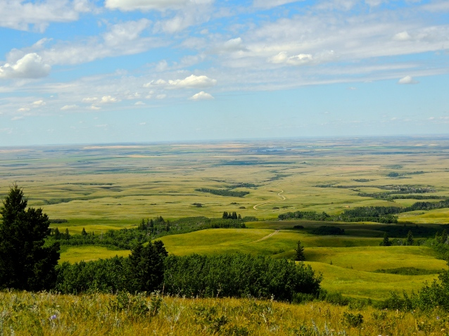 View from Bald Butte, Cypress Hills, July 2013