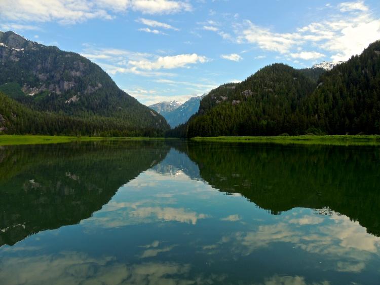 Great Bear Rainforest reflection