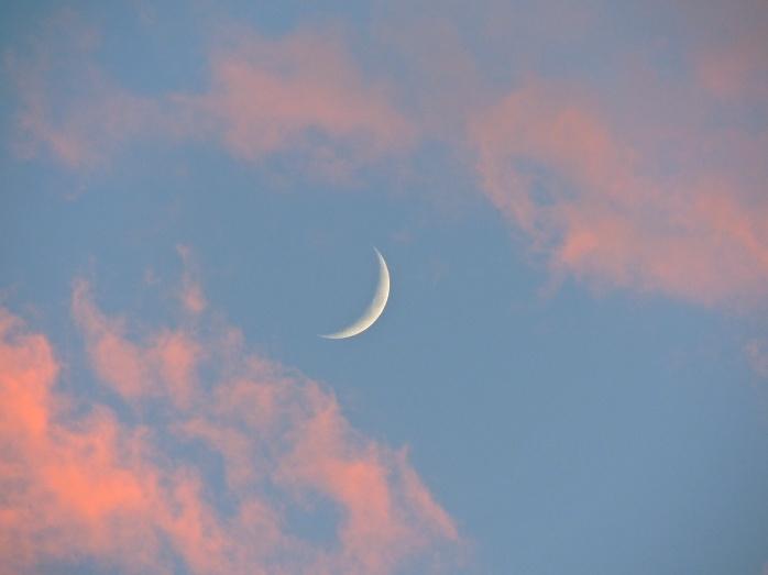 Moon in June from my balcony