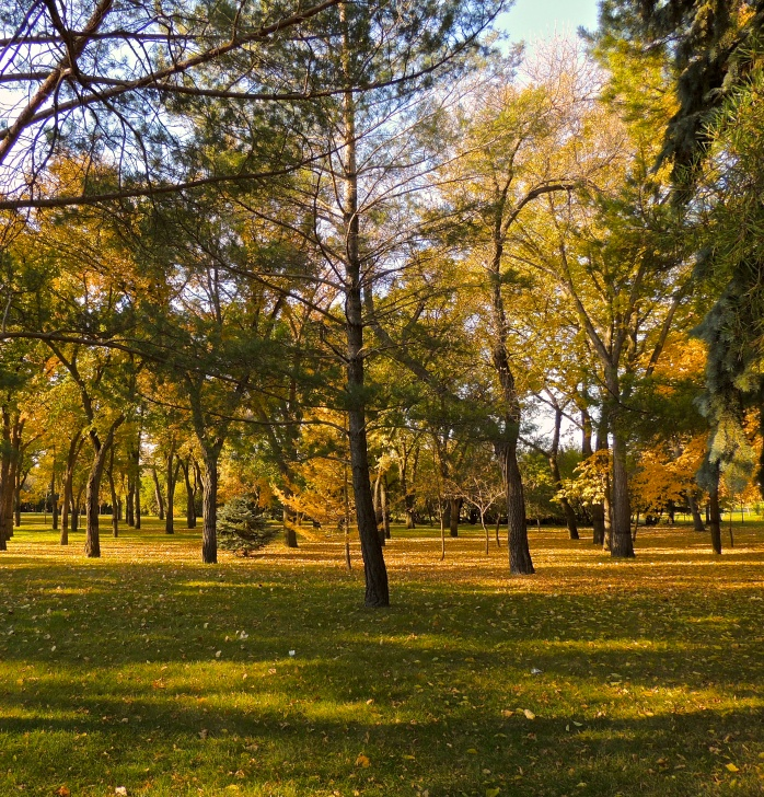 Some happy places are close by...Wascana Park in October
