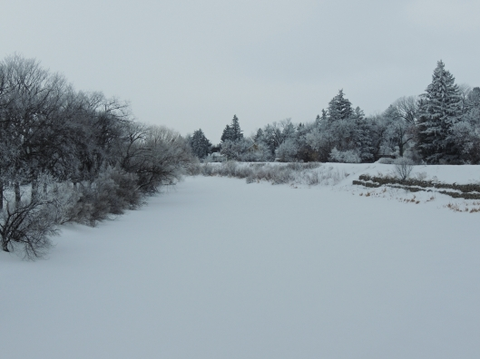 Wascana Creek in Winter