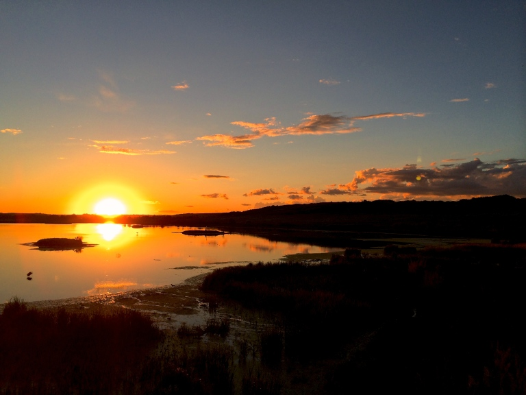 Battlefords Goose Project sunset