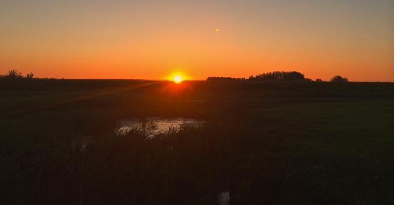 mid July Sunrise on the prairies 2