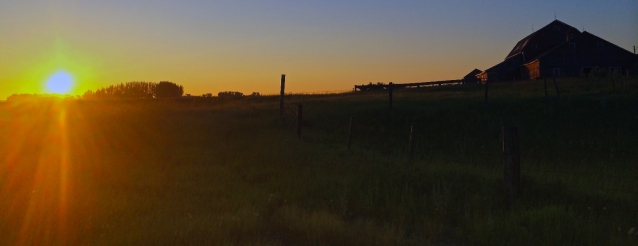 Mid July Sunrise on the Prairies