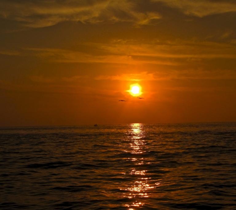 Sunset sail, Banderas Bay, Puerto Vallata, March 2012