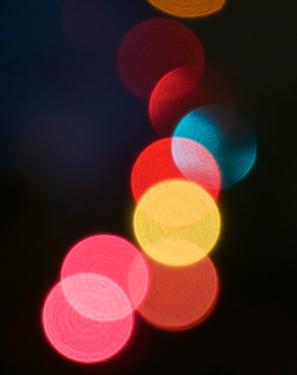 Kim's Christmas lights 2014 one