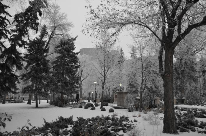 frosty Victoria Park