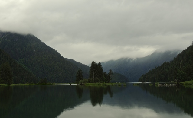 inlet in the Great Bear Rainforest