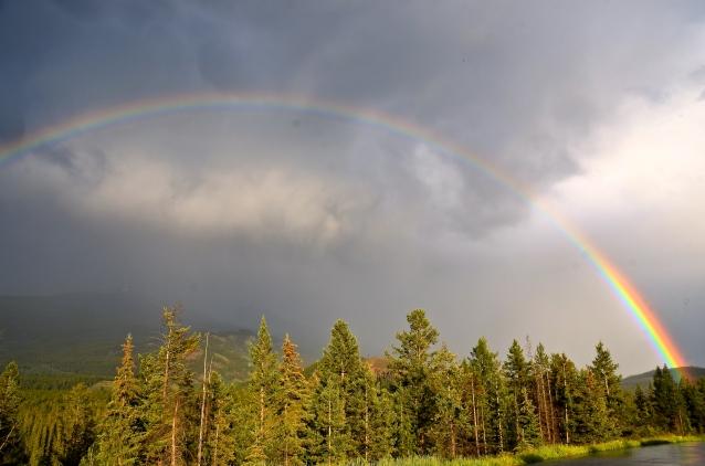 Jasper rainbow