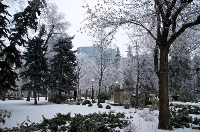 Victoria Park last December