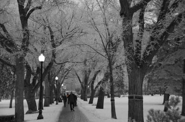 a pretty walk to work