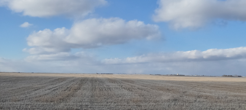 early spring on theprairies