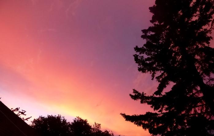 Tuesday night sky-2