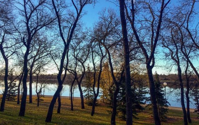 wascana-park-in-november