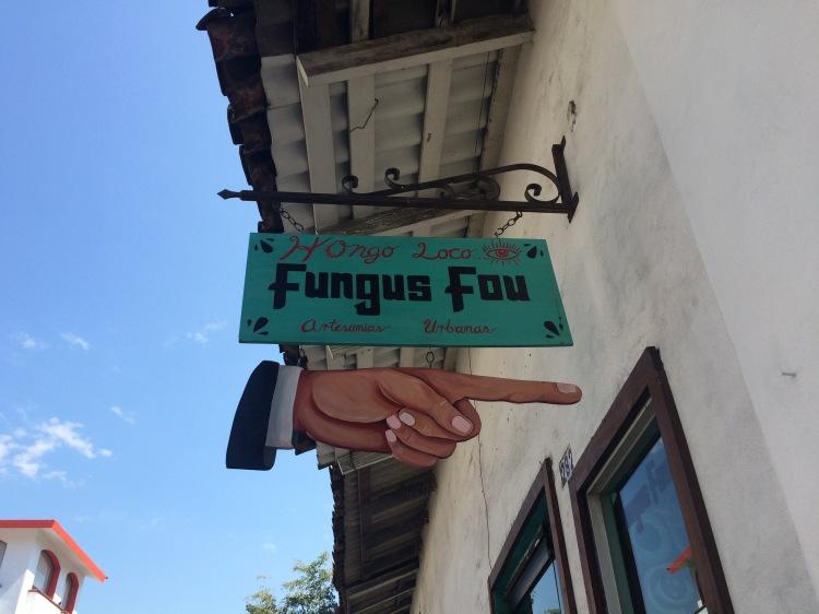 Fungus Fou