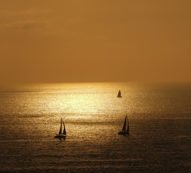 three sailboats at sunset