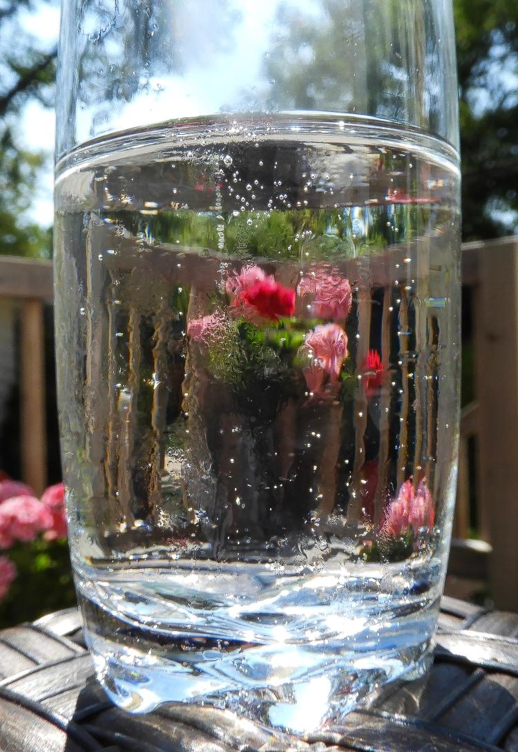 bubbly hot day